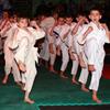 Фестиваль боевых искусств 2011 (часть 2. бои по правилам М1)