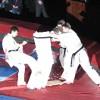 Фестиваль боевых искусств 2011 (часть 1. показательные выступления)