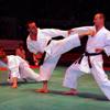 Фестиваль боевых искусств – 2010 (часть 1)