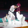 Фестиваль боевых искусств – 2009 (часть 2)