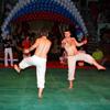 Фестиваль боевых искусств – 2010 (часть 3)