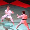 В Брянском цирке прошел VII фестиваль боевых искусств