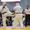 Джалый победил на I чемпионате России по разбиванию досок