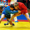 Брянцы завоевали две награды на Первенстве России по самбо