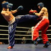 В «Триумфе» прошел межрегиональный турнир по кикбоксингу