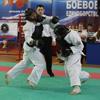 В Брянске завершился турнир по комплексному единоборству
