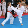 В Сельцо прошел Кубок здоровой нации по карате