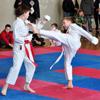 Брянские спортсмены-юниоры отправились на Кубок Мира по каратэ