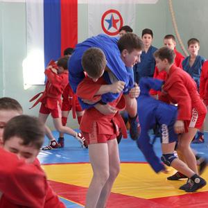 Брянская область присоединилась к всероссийскому проекту «Самбо в школу»