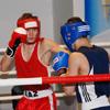 Брянские боксёры завоевали две медали Первенства страны