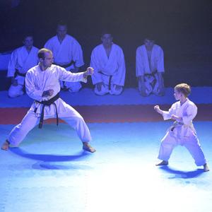 В Брянске прошел XI фестиваль боевых искусств