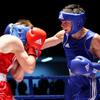 Брянские боксеры завоевали семь медалей на чемпионате Смоленской области