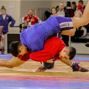 Четыре медали завоевали брянские самбисты на Первенстве ЦФО