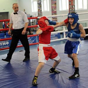 В «Триумфе» прошел межрегиональный турнир по боксу